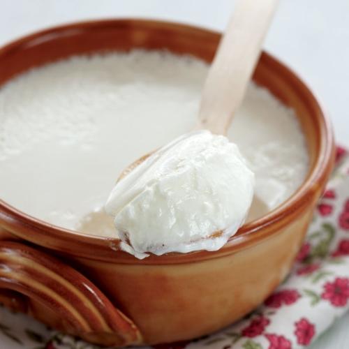evde yoğurt yapmanın püf noktası, pastörize sütle yoğurt yapımı, evde yoğurt yapımı püf noktaları, evde yoğurt yapımı yoğurt nasıl yapılır